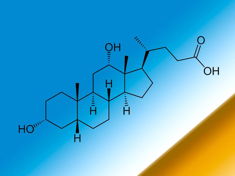 Deoxycholic acid preparing for immune response